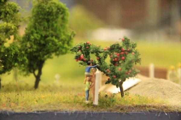 Все просто: мальчишки тырят яблоки с соседского огорода