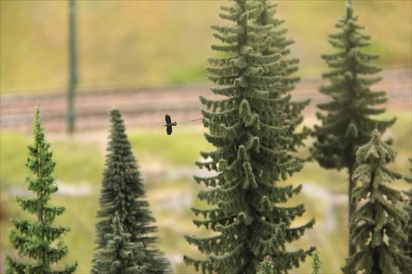 Никто не отменял птиц в лесу