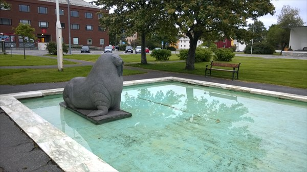 30-см бассейн для моржа
