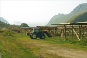 Трактор собирает сушеную треску