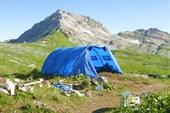 Хоз.палатка
