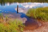озерцо близ Заветного