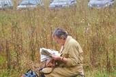 чтение на свежем воздухе