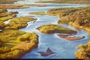 Дельта реки Или