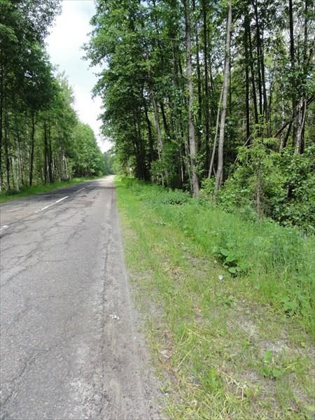 Самая красивая дорога к Середниково