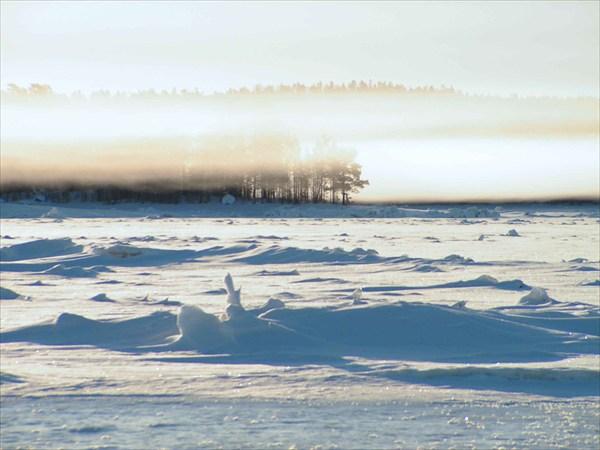 Туман над полыньёй