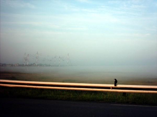 Курган-туман