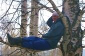 дерево и Леша)