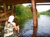 Мост в борисово