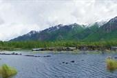 Разливы реки Жомболок