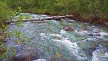 Бревно-переправа через реку Бурсаг