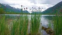 Озеро Бурсагай-Нур