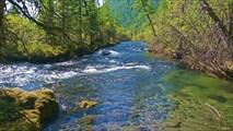 Река Хакта у тропы