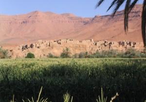 долина Зиз