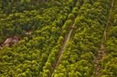 Самая длинная деревянная лестница в мире