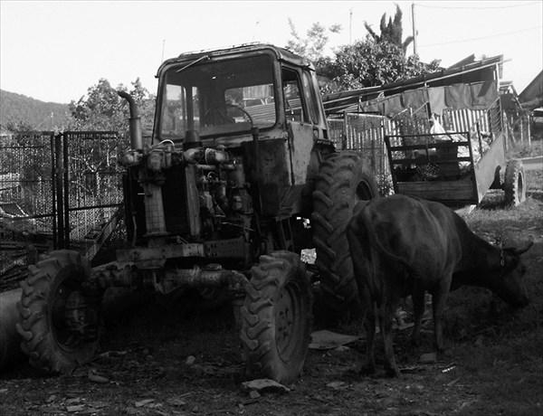 чинит трактор