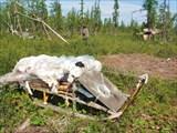 Стоянка оленеводов в устье Сезым-Юган.