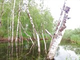 Место впадения Лоръеган.