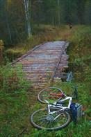 На велосипедах по Кенозерскому парку.От Порженского до Вершинино