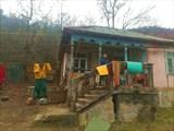 2020.01.07_16:00 Дом, Абхазия, зеленая зима