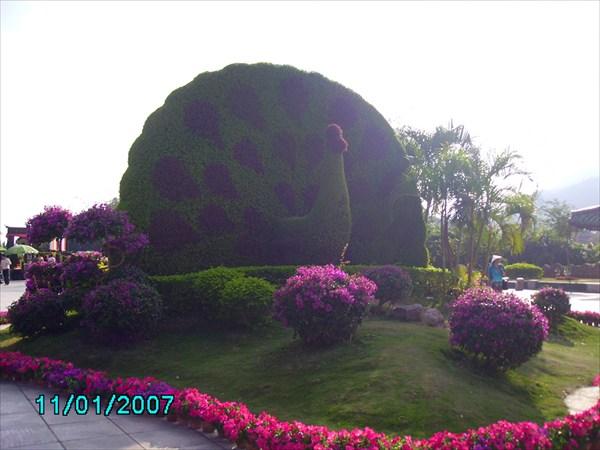 Скульптура из растений.