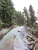 Дорога под Телефериком.