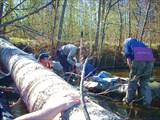 Один из первых завалов на реке