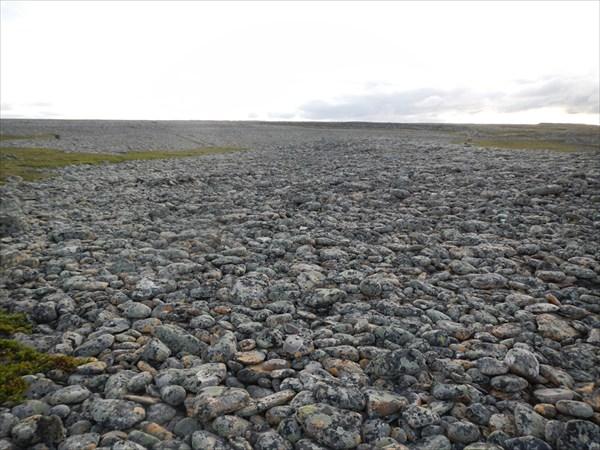 Каменные поля
