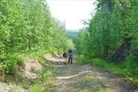 Дорога по марафонке в гору, в гору...