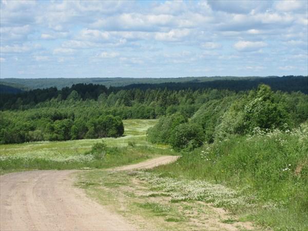 """Природный парк """"Вепсский лес"""""""
