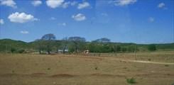 Юкатанский пейзаж