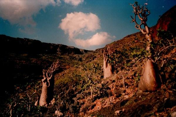 Долина пещеры Giniba Cave