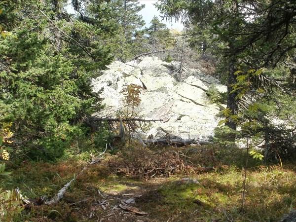 Камни покрыты светло-зелёными лишайниками