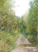 Дорога вдоль Урала